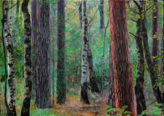 Het grote veld, Lochem 2012, 21 x 31 cm, aquarel/potlood