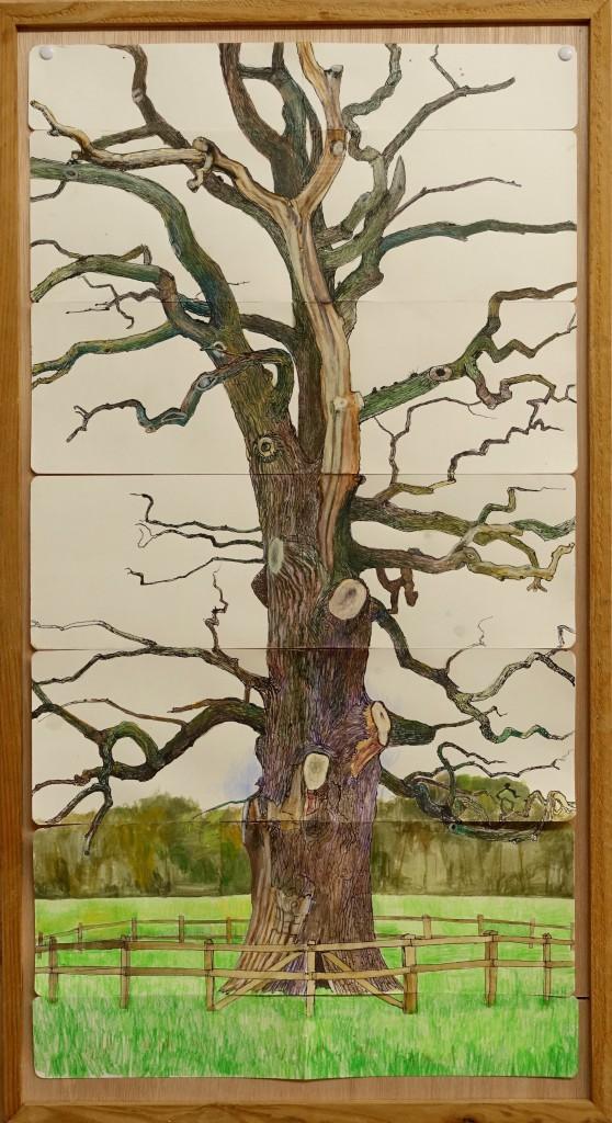De dikke boom van Verwolde, 2015/2018